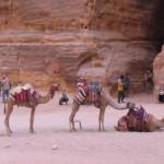 Nieznana Jordania – pustynia, kultura i Morze Martwe