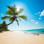 Sri Lanka – właśnie dlatego powinieneś się tam udać!